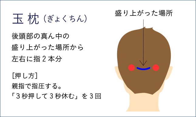 玉枕の位置は後頭部